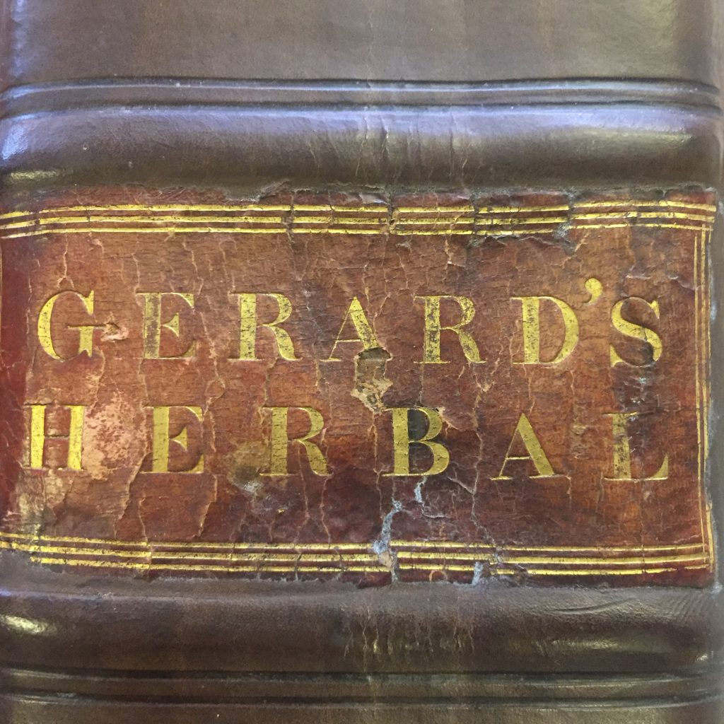 Re-bound copy of the 1597 edition of Gerard's Herbal